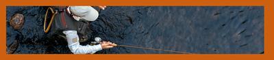 angling banner