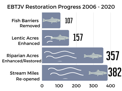 accomplishments of EBTJV projects through 2020