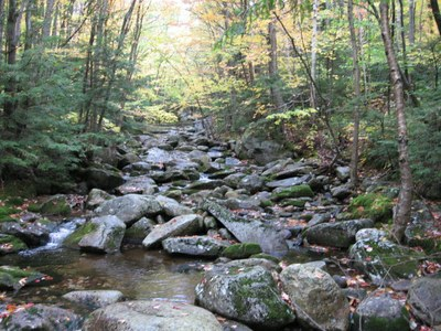 Tributary to Sunday River, Maine