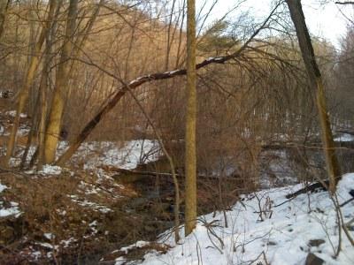 Photo 1 for Frankstown Branch, PA