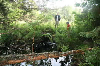 Outlet of culvert on an Unnamed Tributary on Ash Bog Stream, Maine