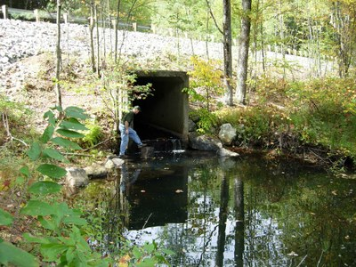 Photo of the Perched Culvert to be Replaced on Hamant Brook in Massachusetts