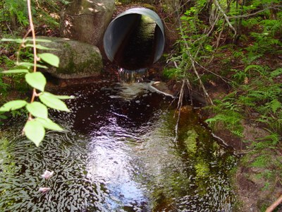Culvert Outlet of Burroughs Brook Culvert, Machias River / St. Croix River Maine