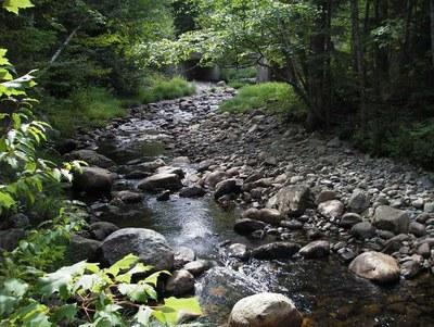 South Bog Stream, Maine