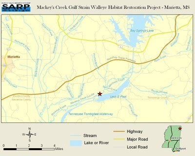 NFHAP: Mackeys Creek Gulf Coast Strain Walleye Habitat Restoration